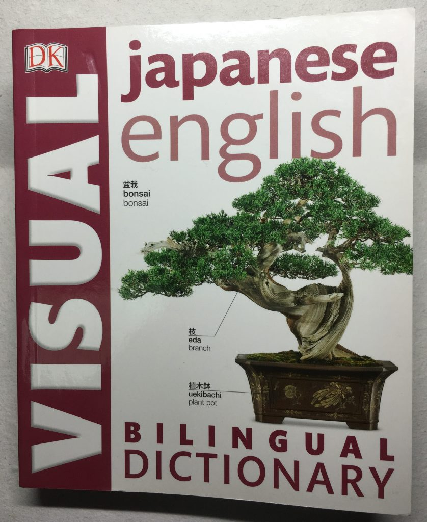 Japanese English Bilingual Visual Dictionary (DK Visual Dictionaries)