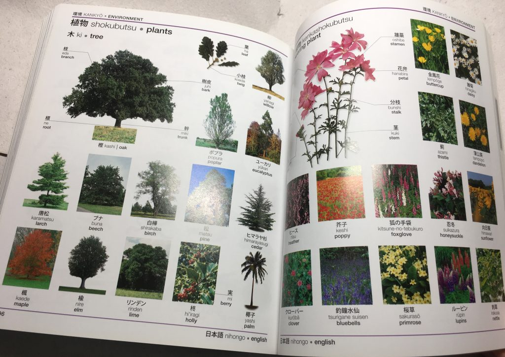Plants, and parts of plants.